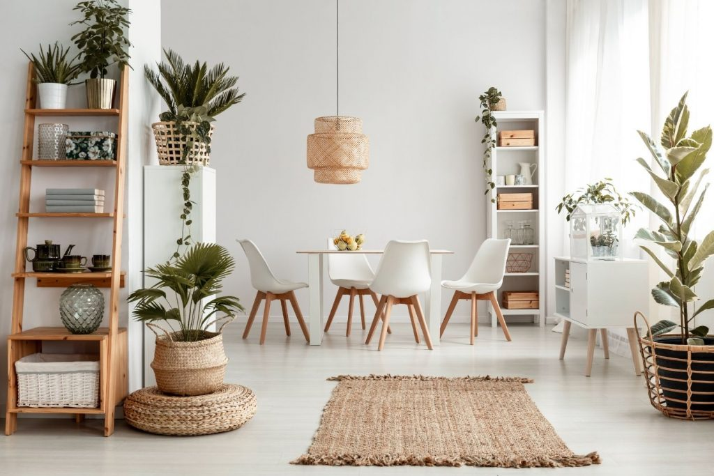 a beautiful home interior following the rules for decorating with plants