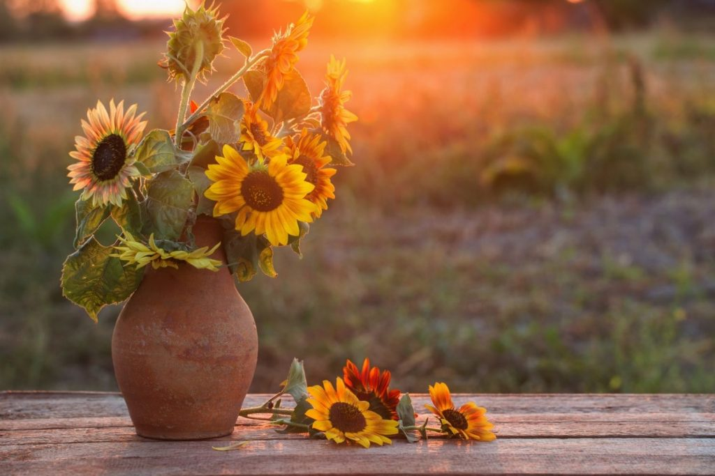 vase with sunflowers on an outdoor table