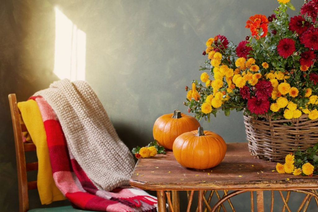 table with pumpkins, flowers, and a chair with blankets draped over it